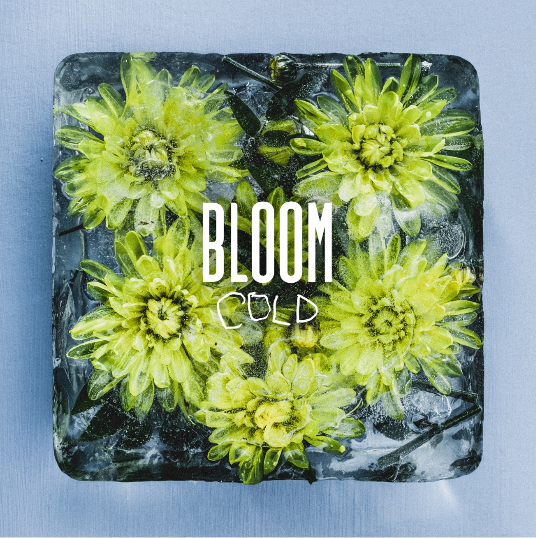Bloom Cold artwork