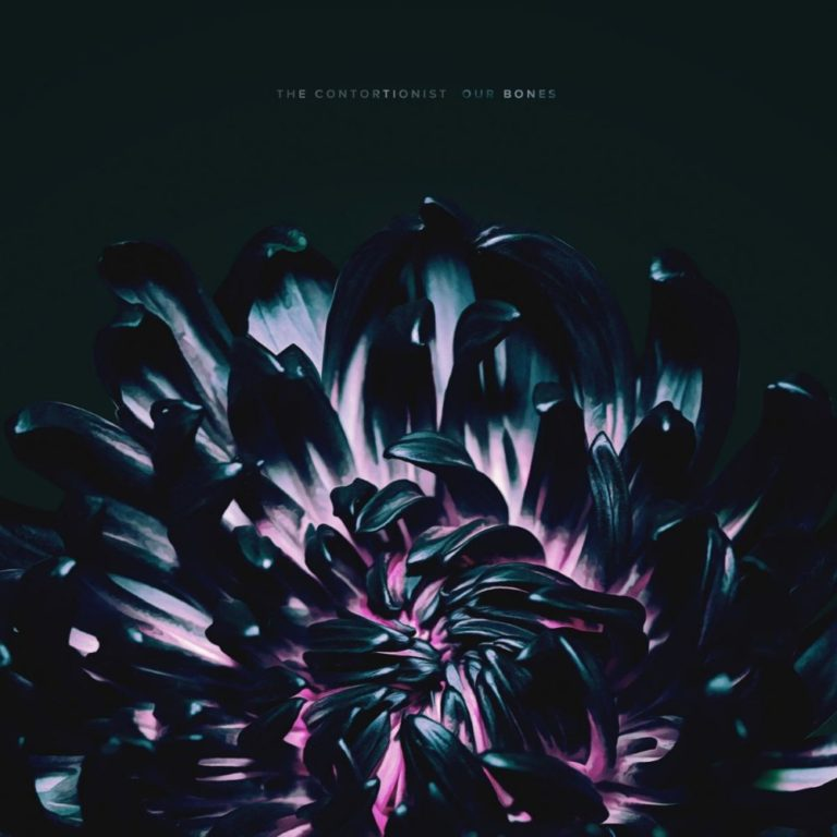 The Contortionist Our Bones artwork